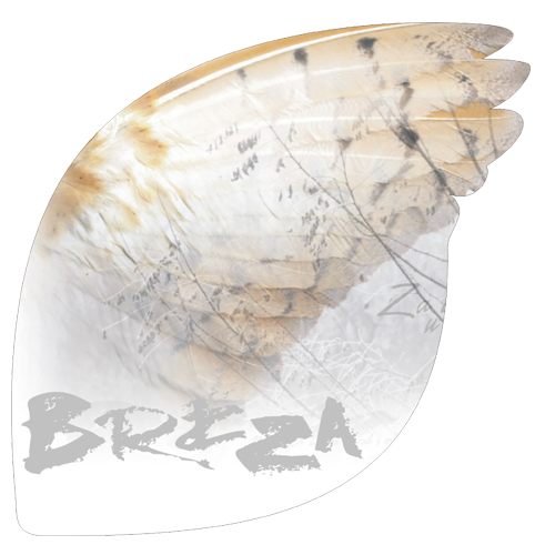 Breza-brošura